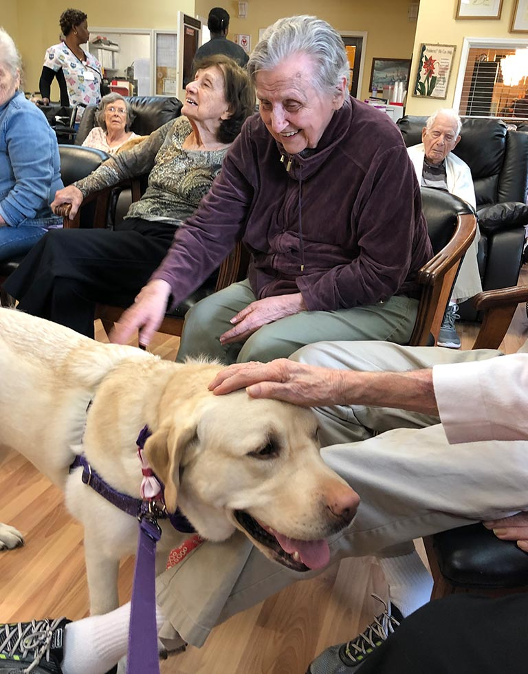 Canine Assisted Therapy